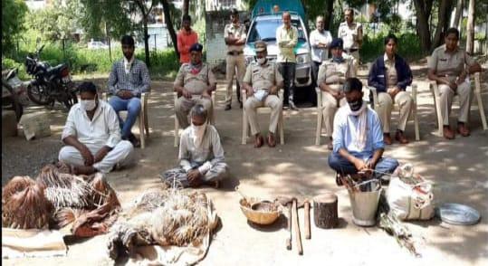Adarsh Maharashtra | शिकार केलेल्या काळविटाचं मटण खाणं पडलं महागात; काय आहे नेमकं प्रकरण?