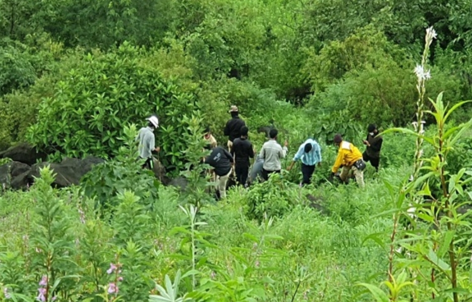 Adarsh Maharashtra | साताऱ्यात एकाच कुटुंबातील चौघांचा खून करुन जंगलात फेकलं, एक जण ताब्यात